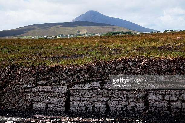 Peat In Irish Bog; Achill Island, County Mayo, Ireland