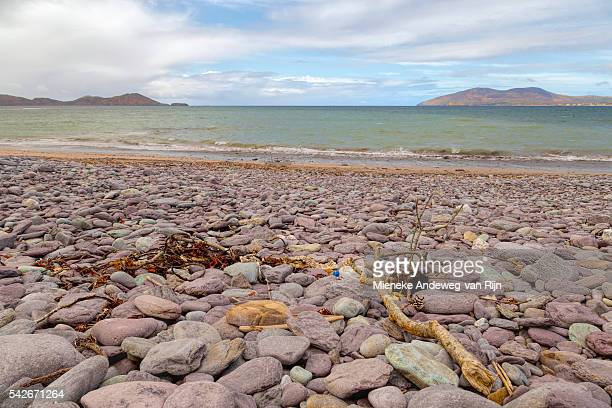 Pebbled beach at Waterville, on the Ring of Kerry, Iveragh Peninsula, North Atlantic Ocean, County Kerry, Ireland.