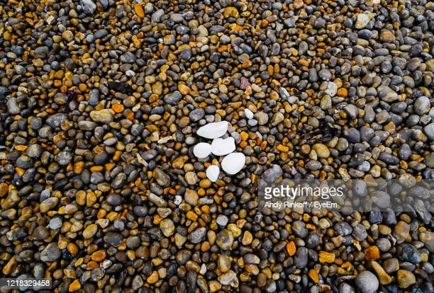 pebbles on a beach - andy rinkoff stock pictures, royalty-free photos & images