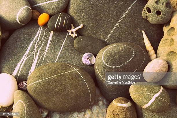 pebbles on beach - catherine macbride stockfoto's en -beelden