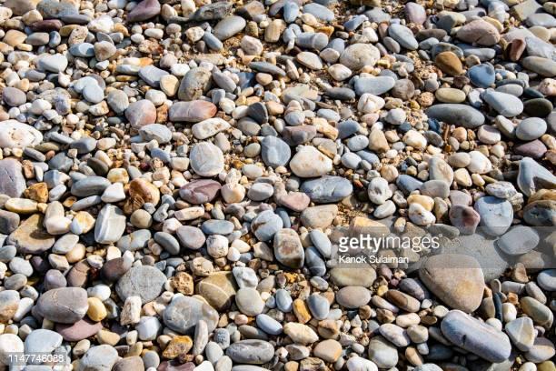 pebbles on the ground - kiesel stock-fotos und bilder