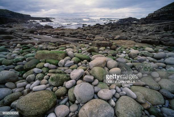 Pebbles polished by the Atlantic Ocean waves, emerging during low tide, Ireland.