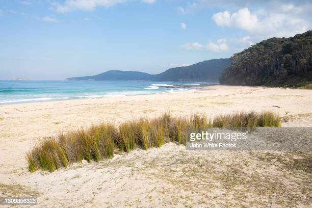 pebbly beach. new south wales. australia. - batemans bay stock pictures, royalty-free photos & images