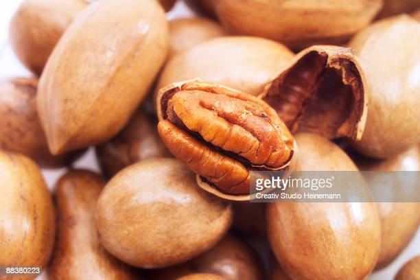 pecan nuts, close-up - nutshell stock photos and pictures