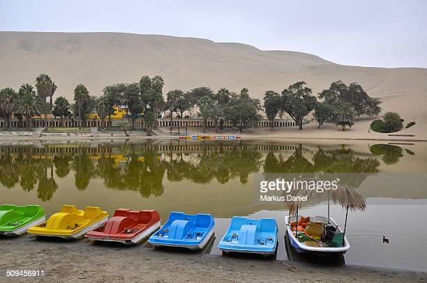 """pedal boats at huacachina oasis lake, ica, peru - """"markus daniel"""" stock pictures, royalty-free photos & images"""