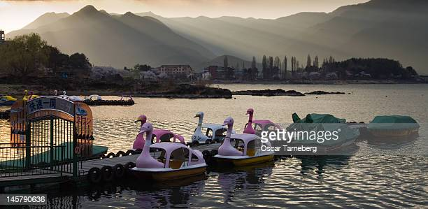 Peddle boats on Kawaguchiko