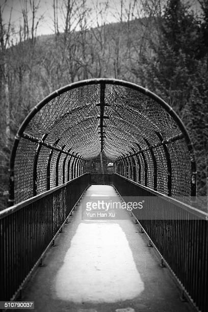 Pedestrian Bridge in the Park