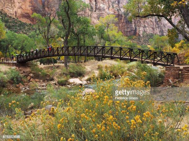 Pedestrian Bridge Over The Virgin River, Zion National Park, Utah