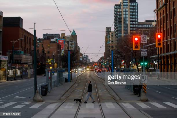 Pedestrian cross the street with a dog as Toronto copes with a shutdown due to the Coronavirus, on April 1, 2020 in Toronto, Canada. Prime Minister...