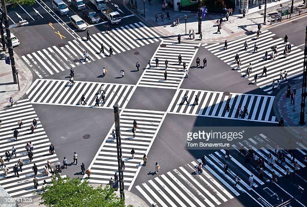 A pedestrian crossing in downtown Tokyo