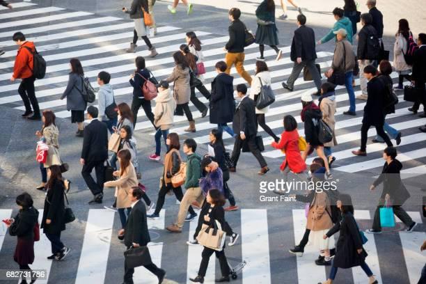 pedestrian crossing. - zebrapad stockfoto's en -beelden