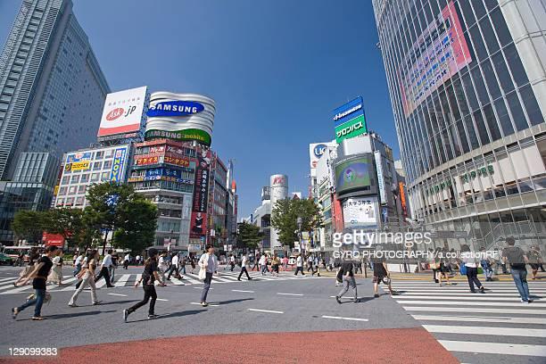 Pedestrian Crossings at Shibuya Station