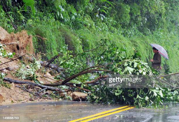 A pedestrian looks on at a collapsed bank on the side of a road in New Taipei City on August 2 2012 Typhoon Saola pounded Taiwan with fierce winds...