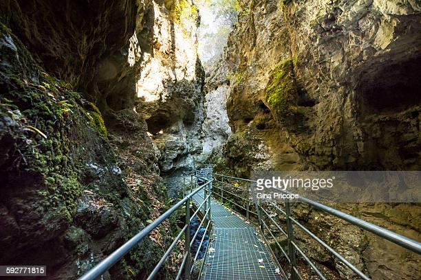 pedestrian suspended bridge on rio sass canyon - トレンティーノ ストックフォトと画像