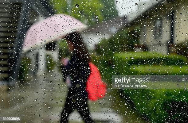 A pedestrian uses her umbrella in the rain in Alhambra California on April 8 2016 as rain began falling and is expected through the weekend in...