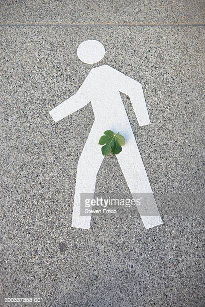 Pedestrian walk symbol painted on sidewalk, leaf covering groin area
