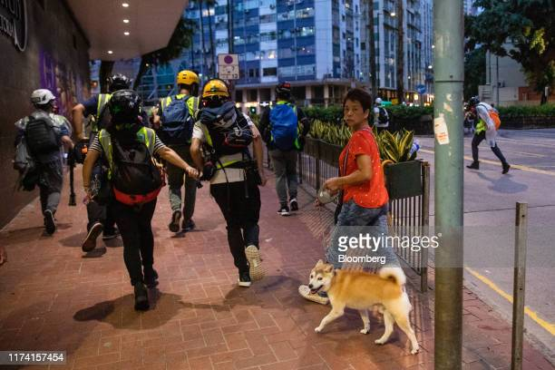 A pedestrian walks a dog beside members of the media during a protest in the Wan Chai district of Hong Kong China on Sunday Oct 6 2019 Violence...