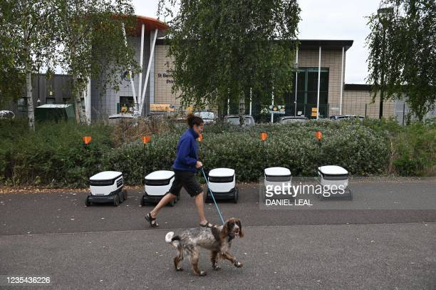 Pedestrian walks her dog next to a line of parked autonomous robots called Starship before delivering groceries from a nearby Co-op supermarket in...