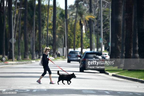 Pedestrian wearing a mask walks her dog in the City of Beverly Hills during the COVID-19 lockdown on April 22, 2020 in Beverly Hills, California....