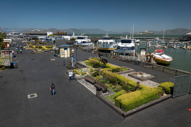 CA: Down On Fisherman's Wharf, The Sea Lions Bark At Empty Piers