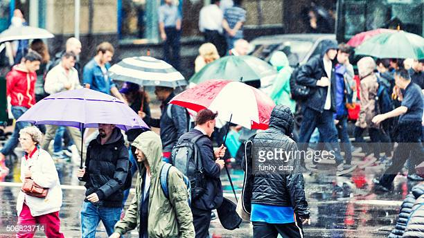 pedestrians crossing during rain - sydney rain stock pictures, royalty-free photos & images