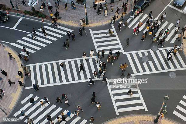 pedestrians crossing street - shibuya ward stock pictures, royalty-free photos & images