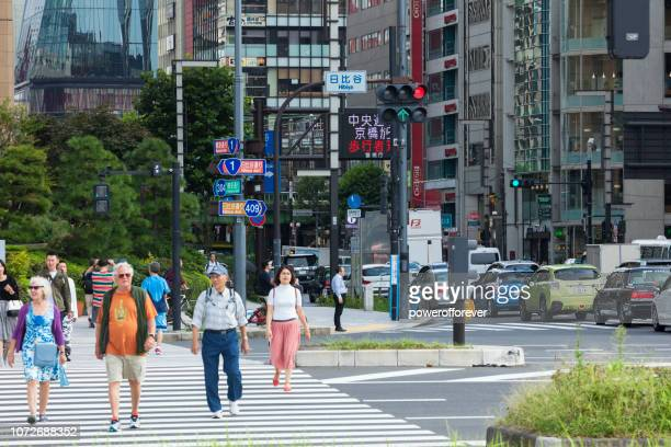 Pedestrians Crossing the Street in Downtown Tokyo, Japan