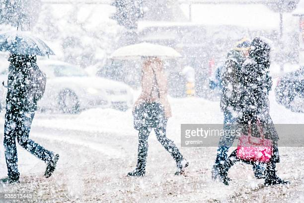 pedestrians crossing the street on a snowy day - winter weather stock photos and pictures
