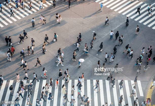 pedestrians crossing the street - sopra foto e immagini stock