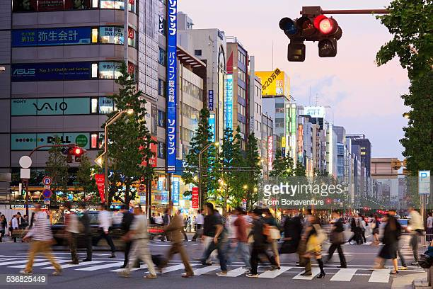 Pedestrians in Akihabara Electric Town