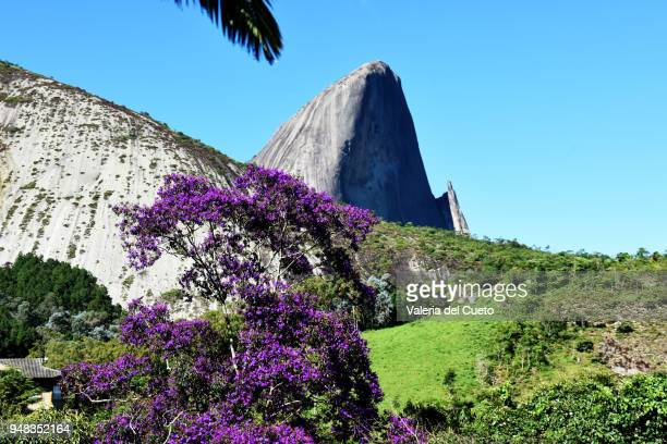pedra azul framed by flowery tree - sem fim... valéria del cueto stock pictures, royalty-free photos & images