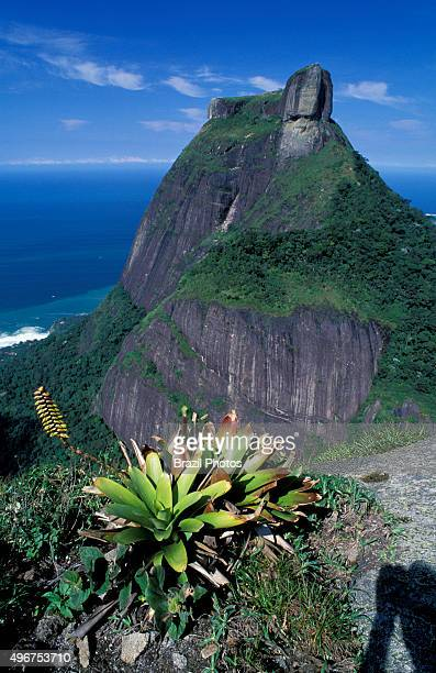 Pedra da Gávea a mountain in Tijuca Forest Rio de Janeiro Brazil composed of granite and gneiss its elevation is 844 metres making it one of the...