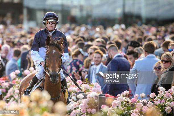 Pedrena ridden by Michael Dee returns after winning The Hong Kong Jockey Club Stakes at Flemington Racecourse on November 07 2017 in Flemington...