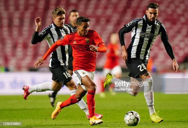 Pedrinho of SL Benfica with Willyan Rocha of Portimonense SC and Julio Cesar of Portimonense SC in action during the Liga NOS match between SL...