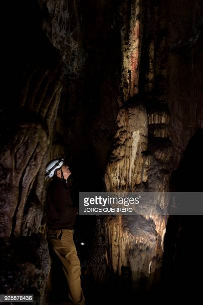 Pedro Cantalejo director of the Andalusian cave of Ardales looks at neanderthal cavepaintings inside the cavern on March 1 2018 The cavepaintings...