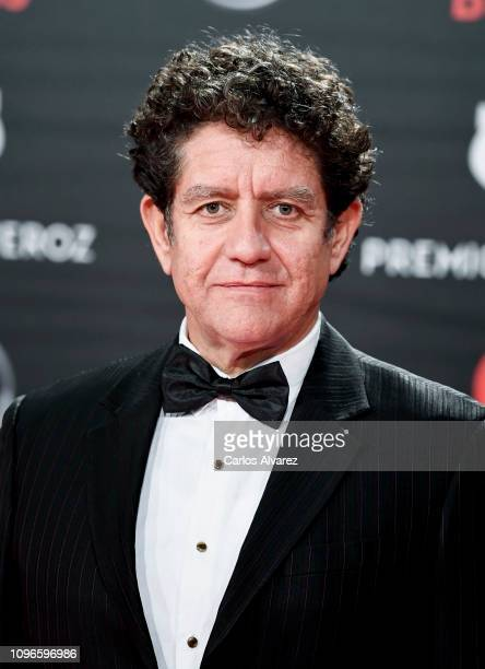 Pedro Casablanc attends during Feroz awards red carpet on January 19 2019 in Bilbao Spain