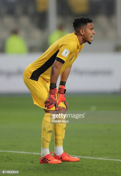 Pedro Gallese goalkeeper of Peru reacts during a second leg match between Peru and New Zealand as part of the 2018 FIFA World Cup Qualifier Playoff...