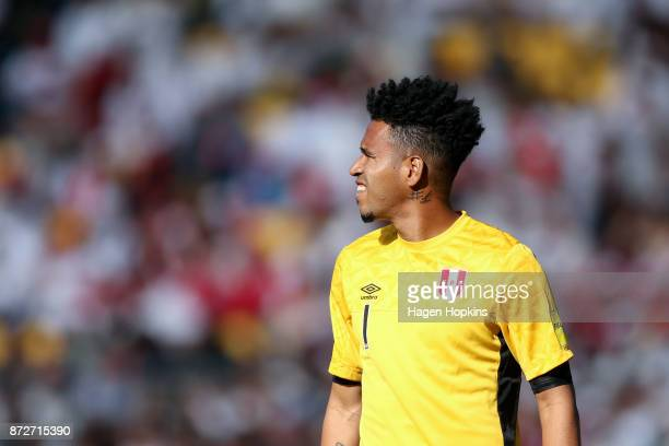 Pedro Gallese of Peru looks on during the 2018 FIFA World Cup Qualifier match between the New Zealand All Whites and Peru at Westpac Stadium on...