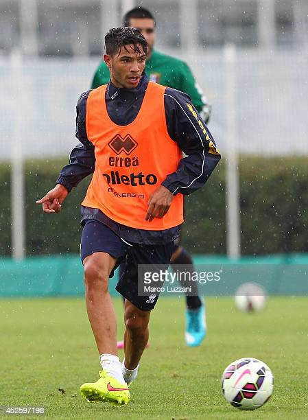 Pedro Mendes of FC Parma in action during a FC Parma Training Session at the club's training ground on July 24 2014 in Collecchio Italy