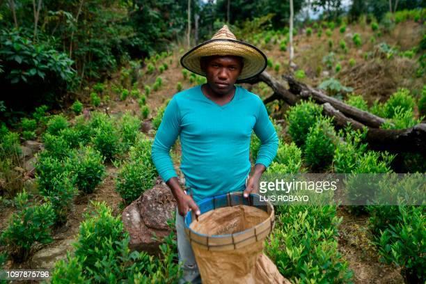 Pedro Mendez a Venezuelan migrant working as a 'Raspachin' poses for a picture at a coca plantation in the Catatumbo region Norte de Santander...