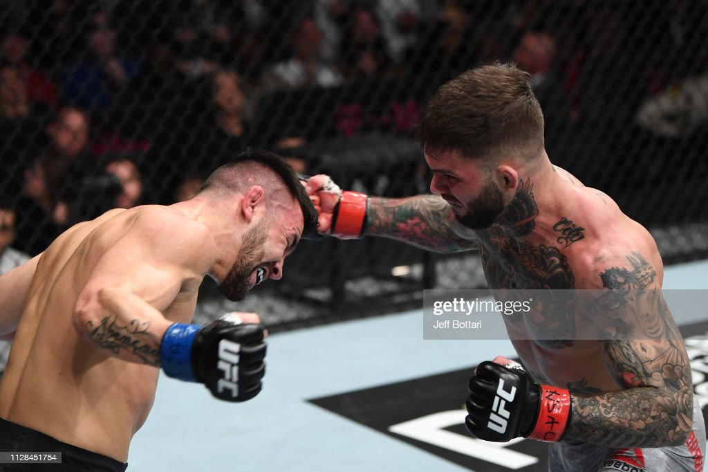 UFC 235: Garbrandt v Munhoz : News Photo