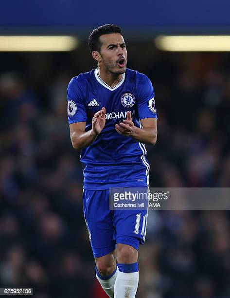 Pedro of Chelsea urges on the fans after he scores to make it 11 during the Premier League match between Chelsea and Tottenham Hotspur at Stamford...