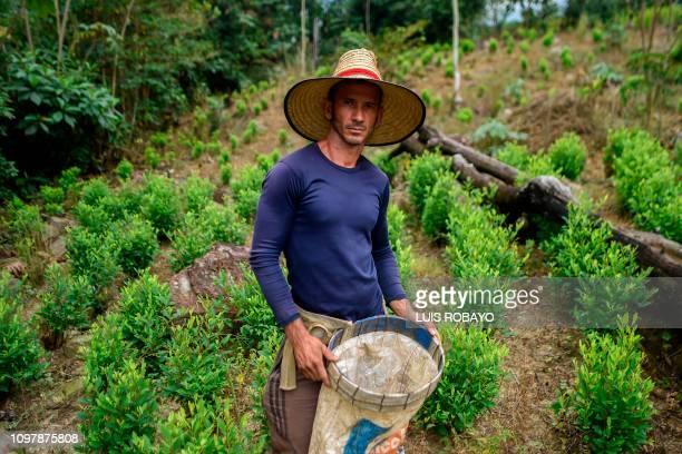 Pedro Palencia a Venezuelan migrant working as a 'Raspachin' poses for a picture at a coca plantation in the Catatumbo region Norte de Santander...
