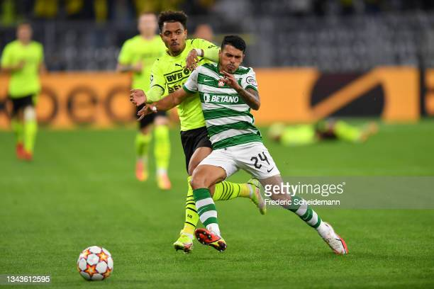 Pedro Porro of Sporting CP is challenged by Donyell Malen of Borussia Dortmund during the UEFA Champions League group C match between Borussia...