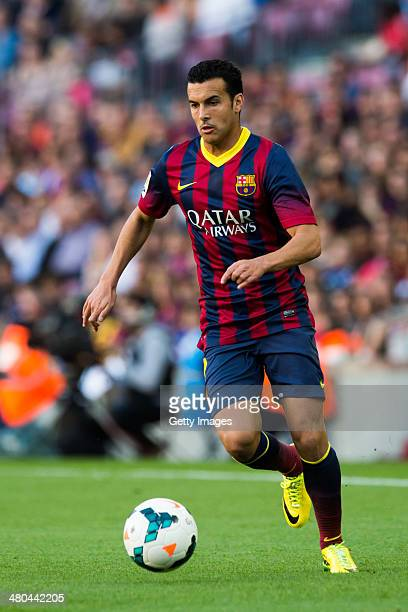 Pedro Rodriguez of FC Barcelona runs with the ball during the La Liga match between FC Barcelona and CA Osasuna at Camp Nou on March 16 2014 in...