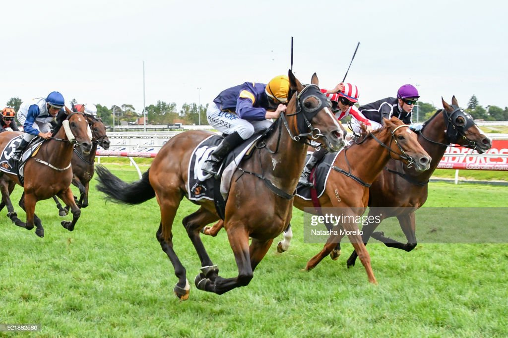 Moorookyle Park Handicap : News Photo