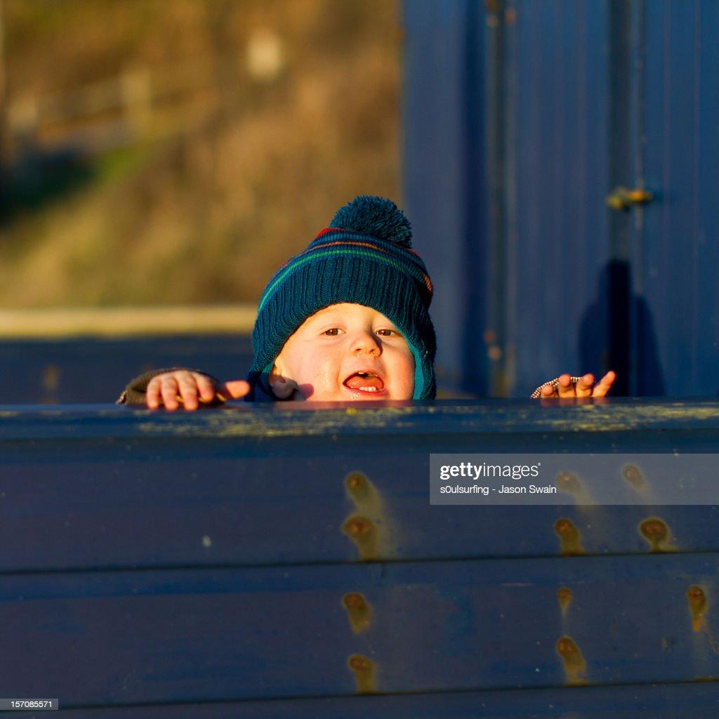 Peek-a-boo : Stock Photo