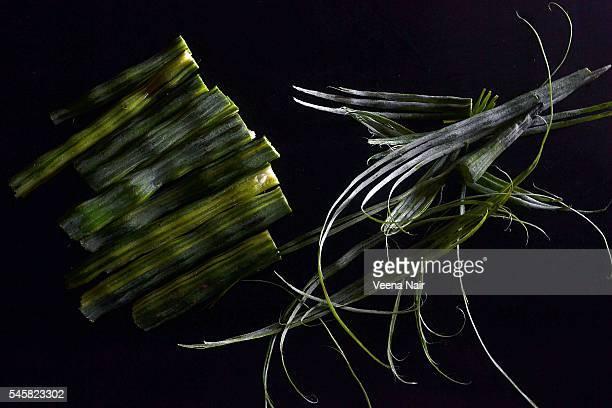 peeled drumsticks-moringa oleifera-vegetable - moringa tree stock photos and pictures