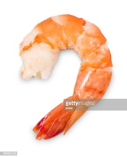 Peeled Shrimp Isolated