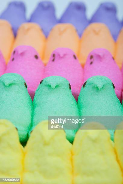 peeps rainbow - easter candy stock pictures, royalty-free photos & images